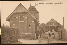 Herzele. Tram Depot. Dépot Du Tram. Postkaart Onverstuurd. - Herzele