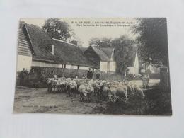 Nielles-lès-Bléquin - Sur La Route De Lumbres à Desvres - Francia
