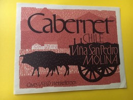 8838 Chili Cabernet Vina San Pedro Molina - Etiquettes