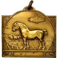 Belgique, Médaille, Paardententdonstelling Sint Lievens Wouthen, 1926, Fisch - Belgique