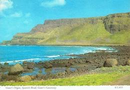GIANT'S CAUSEWAY (Antrim) : Giant's Organ - Spanish Head - Ireland