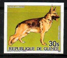 GUINEE. PA 185 De 1985. Berger Allemand. - Hunde