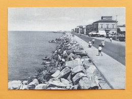 Cartolina Marina Di Pisa - Lungomare - Bar Gorgona - 1955 Ca. - Pisa