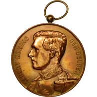 Belgique, Médaille, Albert, Roi Des Belges, Landbouwfrijskamp, Loo-Christi - Belgique