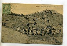 TUNISIE Militaires Artillerie De Montagne Regiment D'Afrique 1907 Timb    /D13-2016 - Tunisia