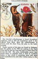 37741 U.s.a. Maximum 1969 Bird Of Alabama, The Yellowhammer - Maximumkarten (MC)