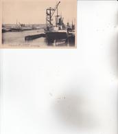 CPA 76 LE HAVRE, Bassin Des Transatlantiques. Les Paquebots. - Le Havre