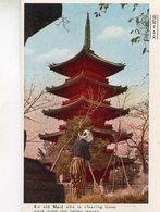 JAPON(TYPE) - Autres