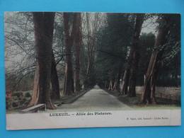70 : LUXEUIL : ALLEE Des PLATANES  , C.P.A. , Carte En Bon état , - Luxeuil Les Bains