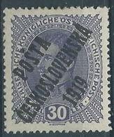1919 CECOSLOVACCHIA SOPRASTAMPATO 30 H AUSTRIA IMPERATORE CARLO I MH * - CZ027 - Cecoslovacchia