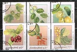 ZIMBABWE /Oblitérés/Used/1991 - Fruits Indigénes - Zimbabwe (1980-...)