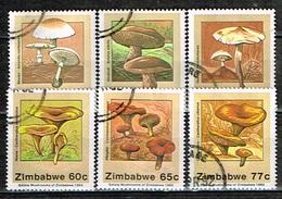 ZIMBABWE /Oblitérés/Used/1992 - Champignons Comestibles - Zimbabwe (1980-...)