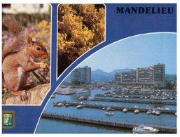 (90) France - Mandelieu With Squirrel - Ecureuil - Autres