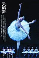 T49-072  ]  Ballet Dance Swan Lake    ,  Pre-stamped Card,postal Stationery - Dance