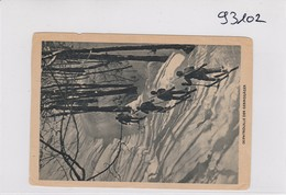 GG: Ansichtskarte Skipatrouille Der Gebirgsjäger, Wien Nach Sudetengau - Besetzungen 1938-45