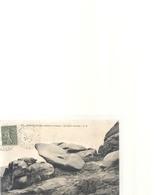 216. PLOUMANACH . ROCHERS ETRANGES - LE SABOT RENVERSE  . ECRITE AU VERSO LE 23 SEPT 1924 . - Ploumanac'h