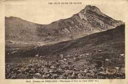 Plateau De ROSELEND Paturages Et Roc Du Vent (2287m) - France