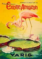 Brazil Aviation Postcard Exotic Amazon Varig 1960 - Reproduction - Advertising