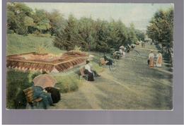 SERBIA Beograd Belgrade Park  1911 OLD POSTCARD 2 Scans - Serbien