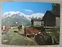 Les Alpes. Pâturage Et Vieux Chalet En Montagne. Jamioulx / Sallanches. Vache - Sallanches