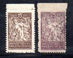 YUG34B - YUGOSLAVIA 1920 .  Due Valori Linguellati  * - Unused Stamps
