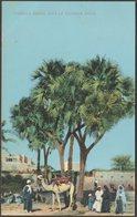 Famille Arabe Sous Le Palmier Doum, C.1910 - Cairo Postcard Trust CPA - Egypt