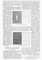 RECREATIONS SCIENTIFIQUES  ( IMAGES OBSCURES )  1895 - Sciences & Technique