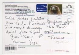 """Beau Timbre , Stamp """" Aigle """" Sur CP , Carte , Postcard Du 23/05/2011 - Storia Postale"""