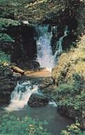 Vallée De SWANSEA - Chutes D'eau De La Rivière Llyenfell à La Grotte De Dan Yr Ogof (Llynfell Falls, Dan-Yr-Ogof Caves) - Pays De Galles
