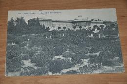 1545- Bruxelles, Le Jardin Botanique - 1909 - België