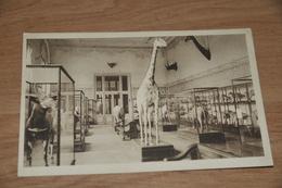 1563- Tervuren Tervueren,  Musée Du Congo Belge - Tervuren
