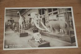 1564- Tervuren Tervueren,  Musée Du Congo Belge - Tervuren