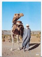 CPSM  Tchad - Tchad