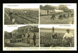 LE CROISIC - Pêcherie Croisicaise - Parcs Du Mont-Esprit Et Du Grand Traict - Carte Publicitaire Animée - Le Croisic