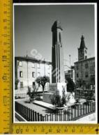 Mantova San Benedetto Po - Mantova