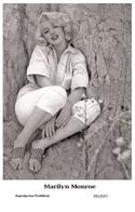MARILYN MONROE - Film Star Pin Up PHOTO POSTCARD - 201-637 Swiftsure Postcard - Postales