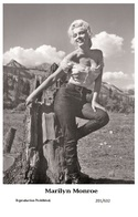 MARILYN MONROE - Film Star Pin Up PHOTO POSTCARD - 201-632 Swiftsure Postcard - Postales