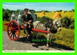 IRELAND - DELIVERING MILK TO THE CREAMERY - PHOTO, JOHN WILLIS - JOHN HINDE ORIGINAL No 2/17 - - Irlande