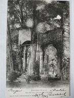 Senones. Les Ruines. Chalet Dom-Calmet. 1903 - Senones