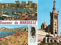 MARSEILLE : Vues Diverses - Marseille