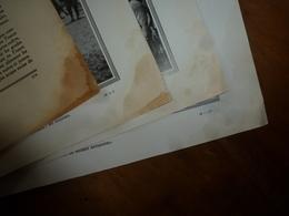 1914-1918 LA GUERRE:Spahis Marocains;Spahis-mitrailleus à Cheval;Tirailleurs (sénégalais,algériens;Zouaves;Tonkinois;etc - Magazines & Papers