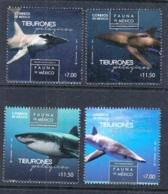 4.- MEXICO 2016 Fauna Of Mexico, Pelagic Sharks - Peces