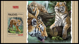 MALDIVES 2018 MNH** Tigers Tiger Tigres Raubkatzen S/S - OFFICIAL ISSUE - DH1818 - Raubkatzen