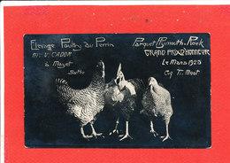 72 MAYET Carte Photo Poule Elevage Poulry Au Perrin M Cador - Mayet