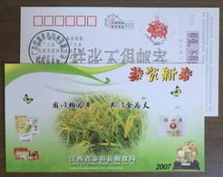 Rice Harvest,Glutinous Rice Flour,Edible Oil,China 2007 Taihe Grain Bureau Advert Pre-stamped Card,specimen Overprint - Agricoltura