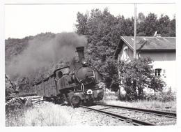 CPM VOIR DOS 19 Halte De Naves Vers Tulle Train De Marchandises Locomotive Vapeur SNCF N°104 En 08/1966 VOIR DOS - Tulle