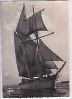 29 BREST L'Etoile Goélette De L école Navale , Voiliers ,navigation Maritime , Editeur Jos ,tampon Foire Exopsition 1955 - Brest