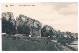 CPA : NAMUR  Rochers Des Grands Malades , Mouton - Namur