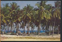°°° 12192 - REPUBBLICA DOMINICANA - COCOTEROS EN PLAYA CARIBE - 1986 With Stamps °°° - Repubblica Dominicana