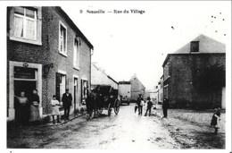 SENZEILLE - Rue Du Village - Reproduction Photographique De La Carte - Cerfontaine
